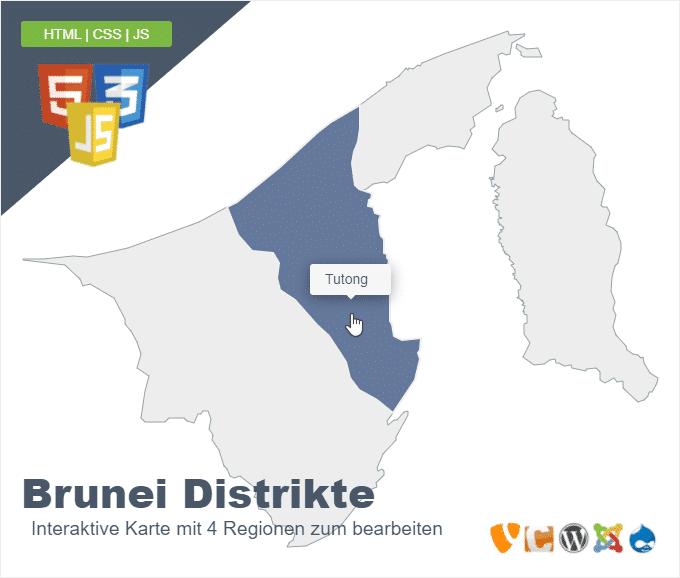 Brunei Distrikte